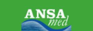 Ansa Med